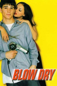 "Poster for the movie ""Blow Dry"""